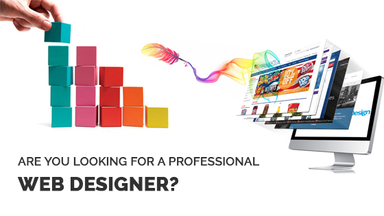 Hire A Professional Web Design Company Or Create Your Own Website?